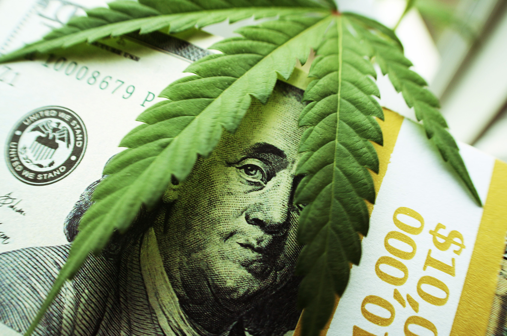 Cannabis innovation etfs woo investors at moneyshow for Spiegel young money etf