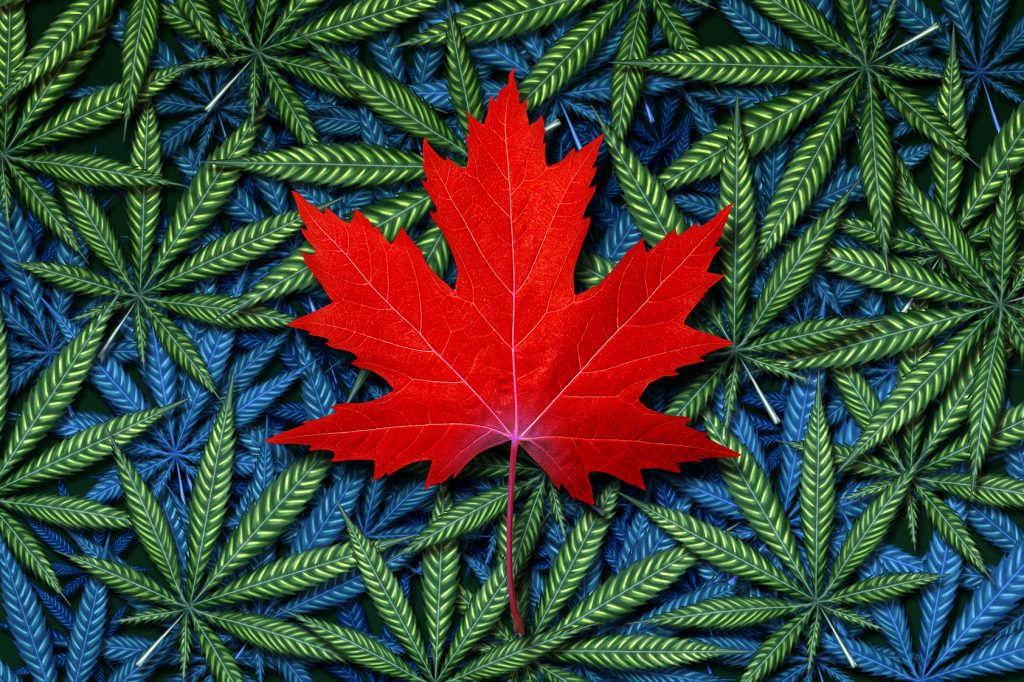 the problem of marijuana in canada Proposed legalization of recreational marijuana in canada will change access to and use this presentation will identify potential problems and suggest a.