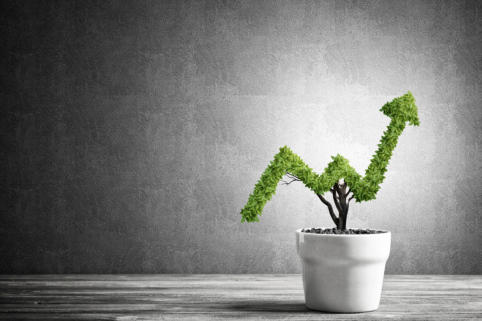 Top 4 Overbought Canadian Cannabis Stocks